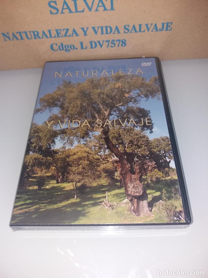 Series de TV: dvd naturaleza y vida salvaje - Foto 4 - 83731456