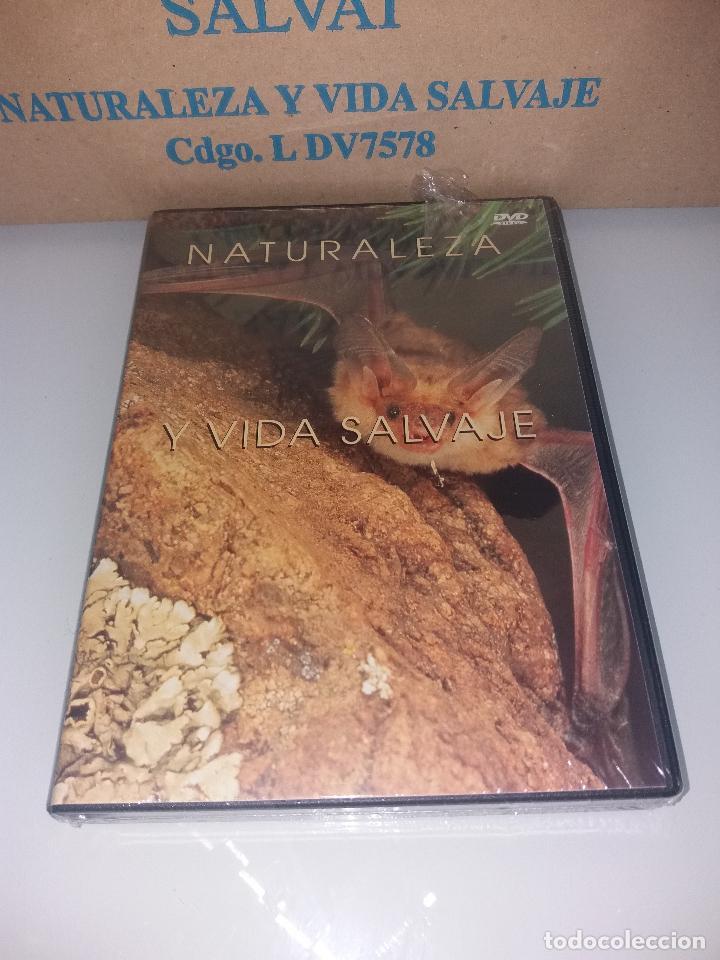 Series de TV: dvd naturaleza y vida salvaje - Foto 5 - 83731456
