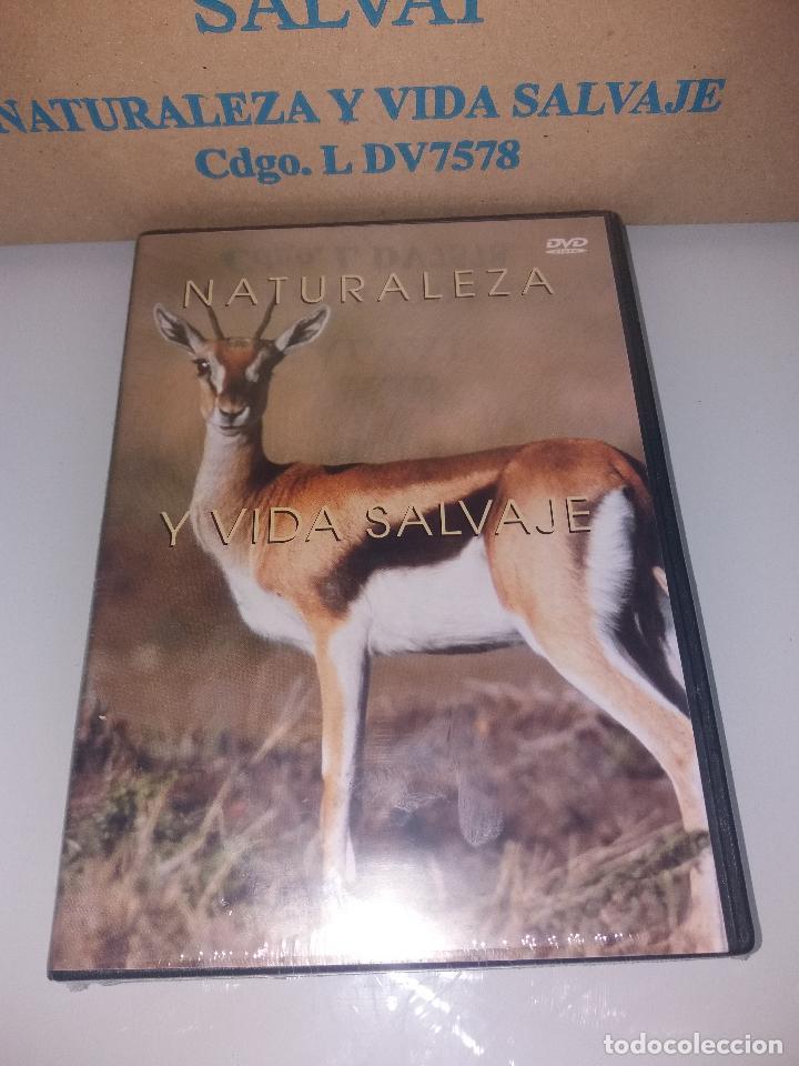 Series de TV: dvd naturaleza y vida salvaje - Foto 6 - 83731456