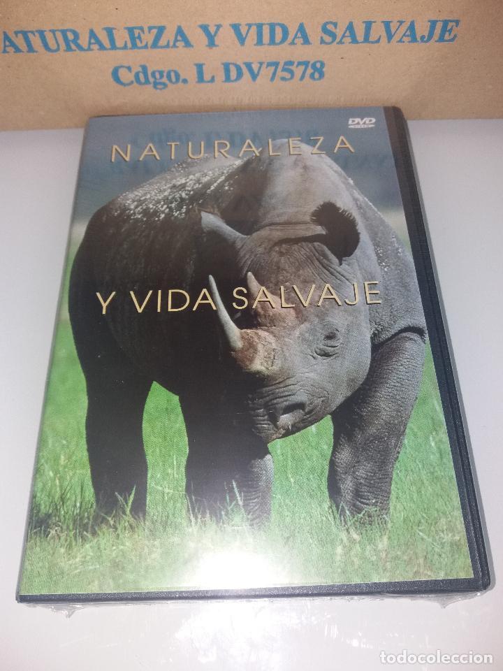 Series de TV: dvd naturaleza y vida salvaje - Foto 10 - 83731456
