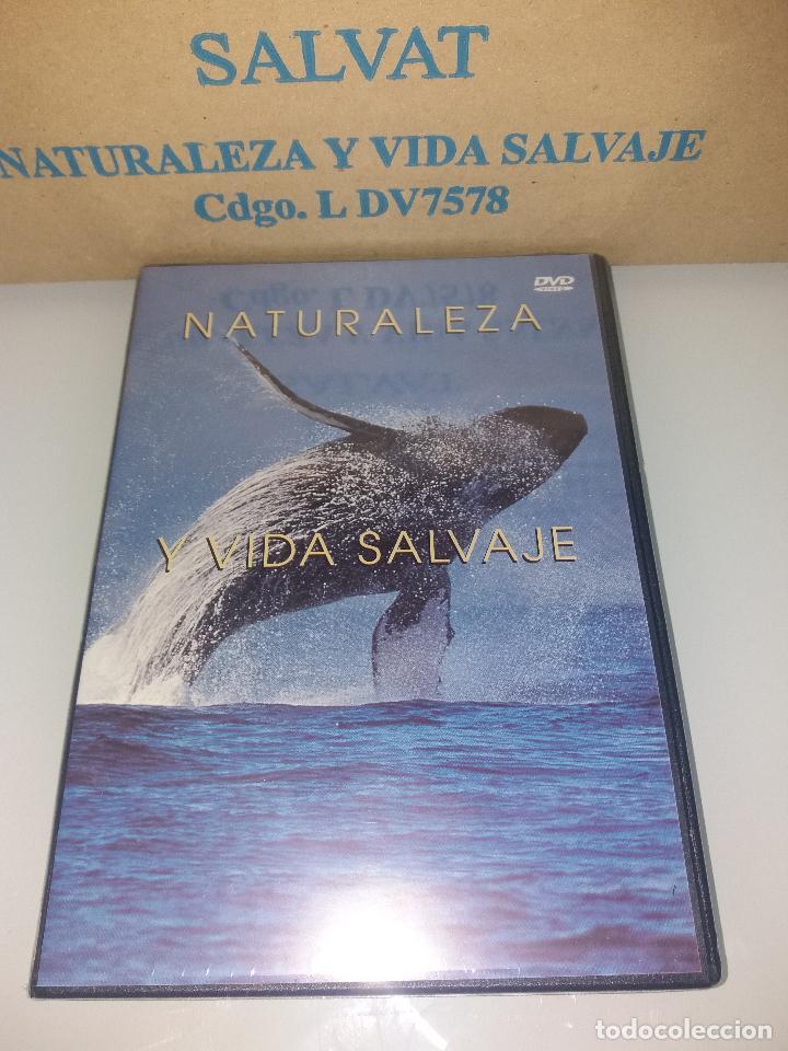 Series de TV: dvd naturaleza y vida salvaje - Foto 11 - 83731456