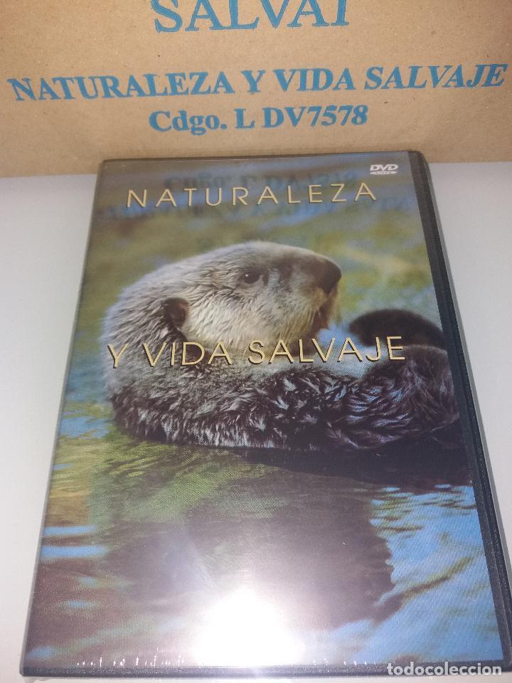Series de TV: dvd naturaleza y vida salvaje - Foto 12 - 83731456