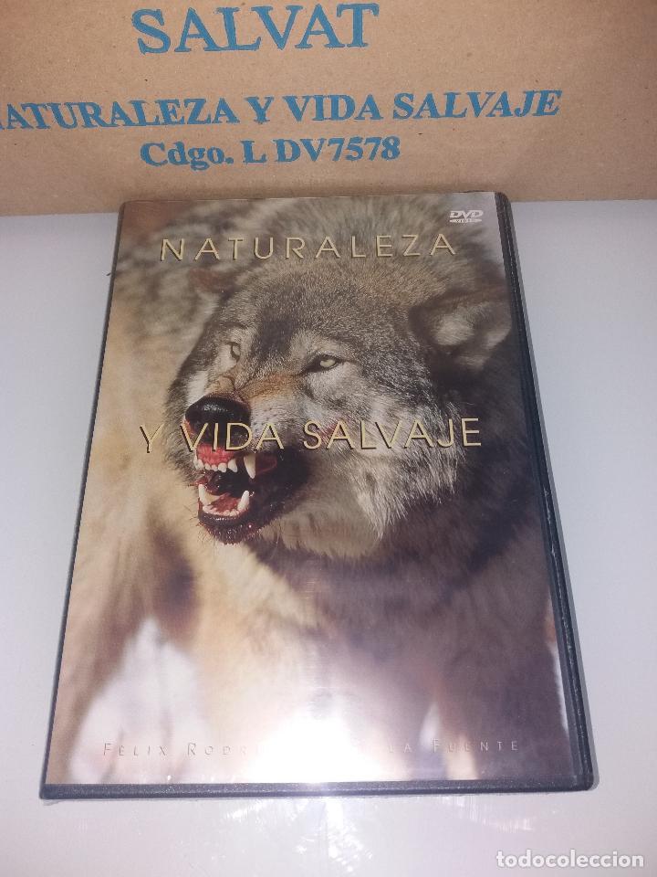 Series de TV: dvd naturaleza y vida salvaje - Foto 13 - 83731456