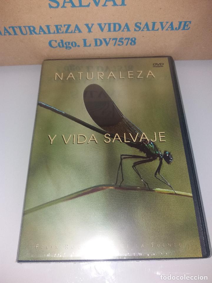Series de TV: dvd naturaleza y vida salvaje - Foto 14 - 83731456