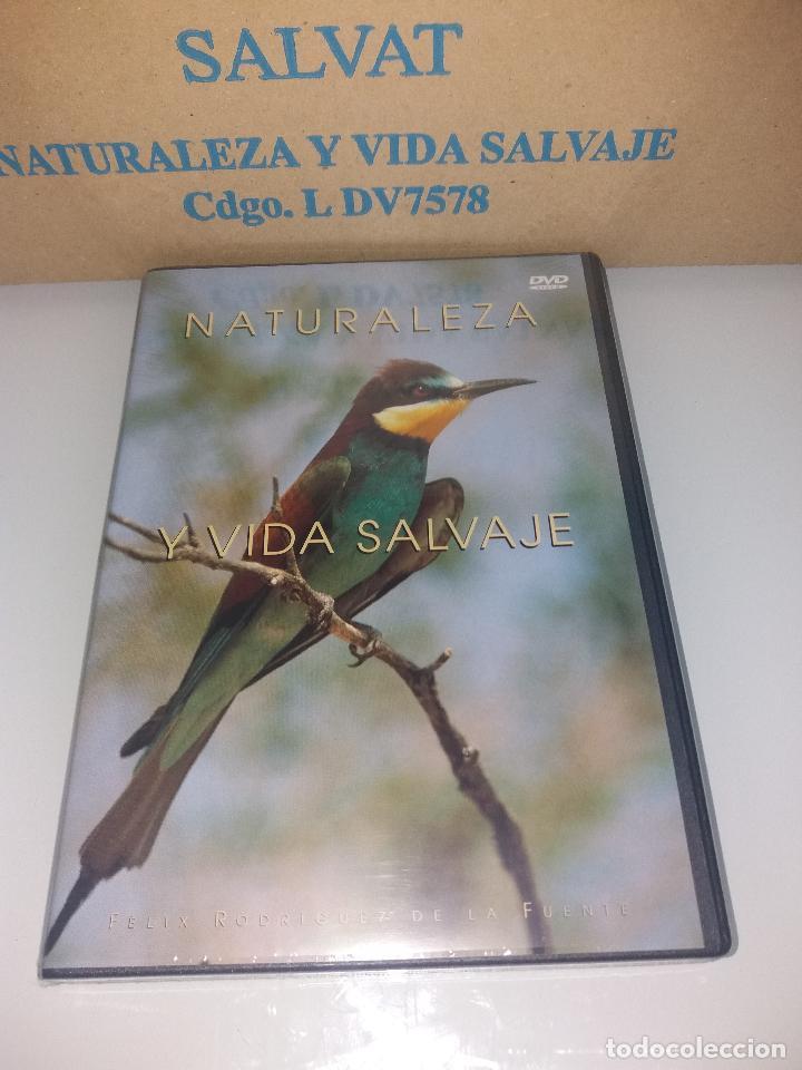 Series de TV: dvd naturaleza y vida salvaje - Foto 15 - 83731456