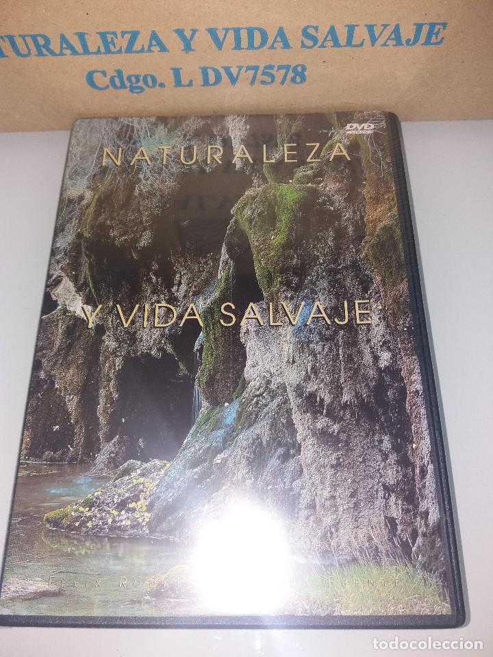 Series de TV: dvd naturaleza y vida salvaje - Foto 16 - 83731456