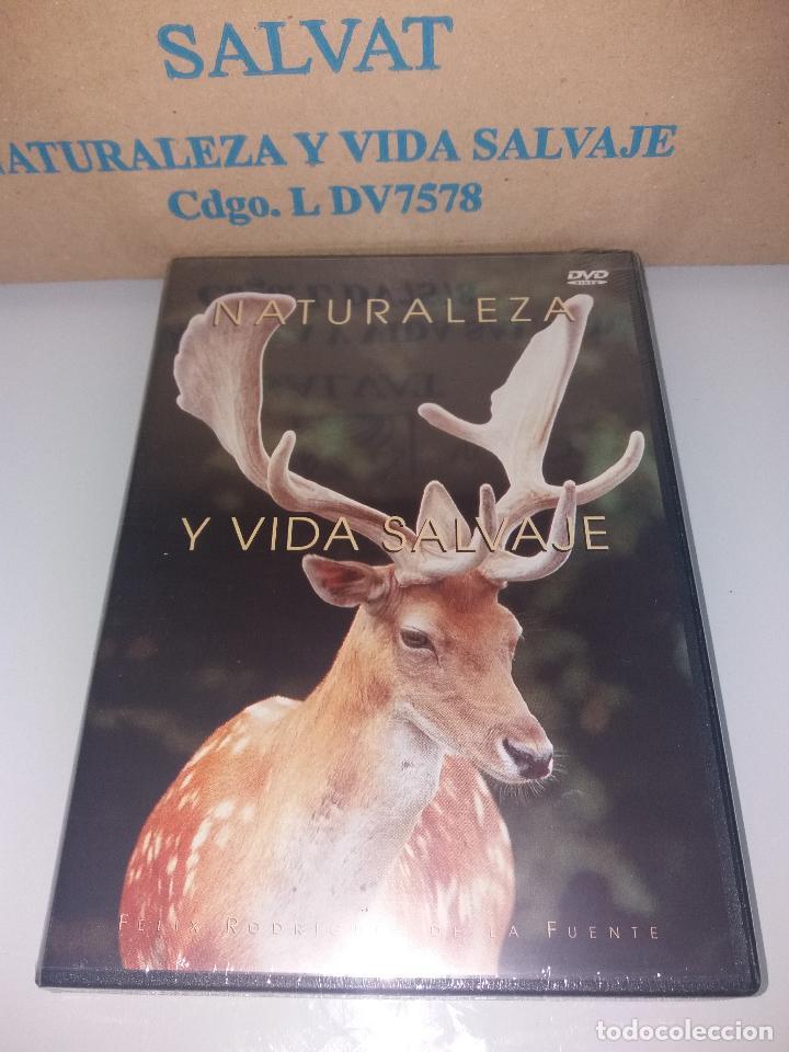 Series de TV: dvd naturaleza y vida salvaje - Foto 17 - 83731456