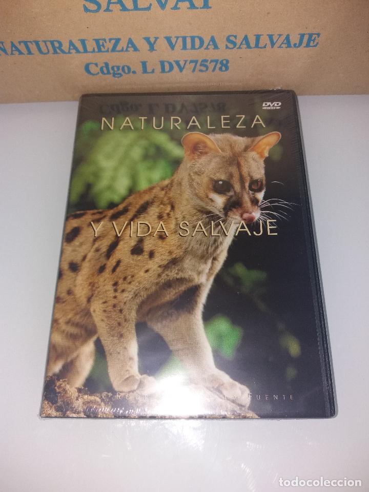 Series de TV: dvd naturaleza y vida salvaje - Foto 18 - 83731456