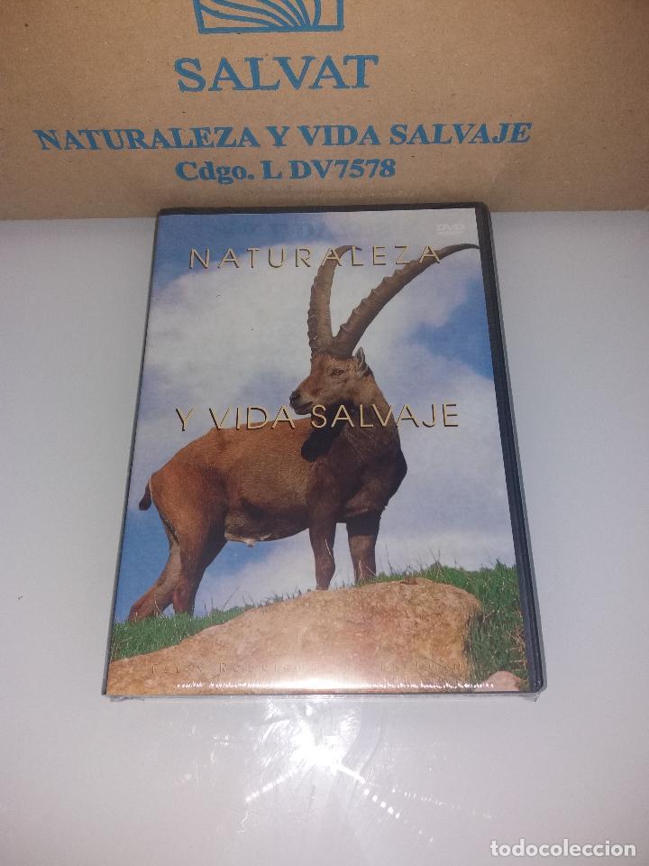 Series de TV: dvd naturaleza y vida salvaje - Foto 19 - 83731456