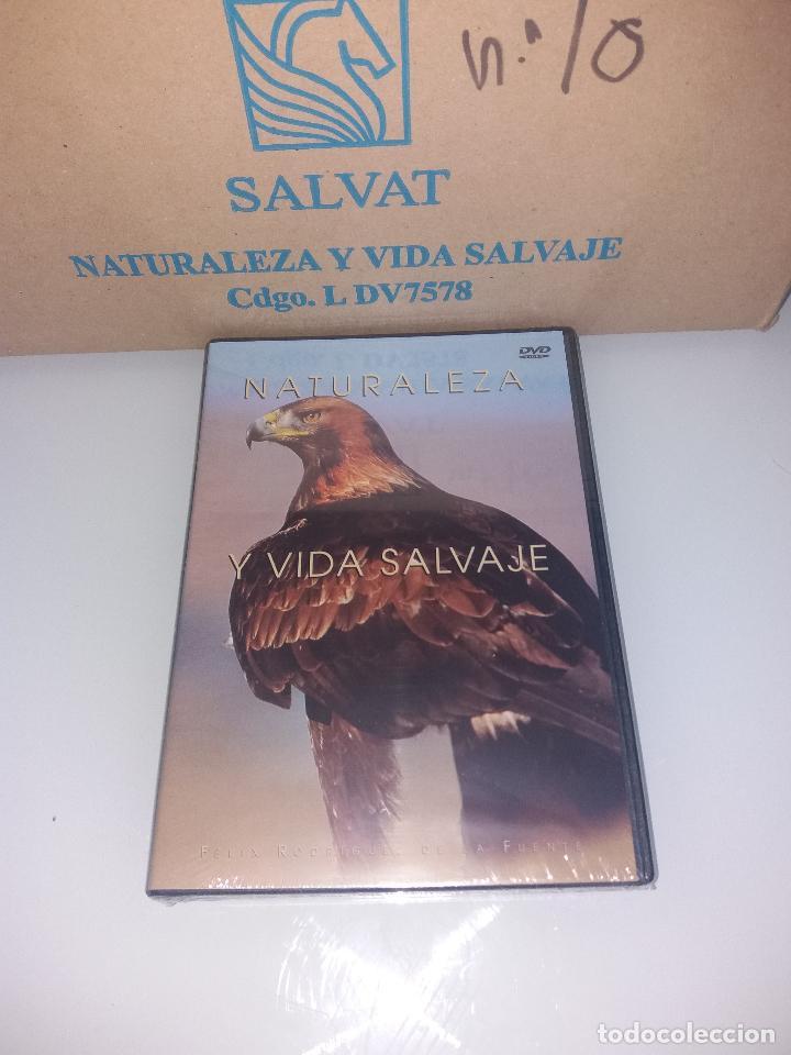 Series de TV: dvd naturaleza y vida salvaje - Foto 20 - 83731456