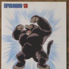 Series de TV: DVD DRAGONBALL DRAGON BALL MARCA EPISODIO 13. Lote 140367354