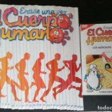 Series de TV: ERASE UNA VEZ EL CUERPO HUMANO: SERIE COMPLETA; 13 DVDS + 30 LIBROS - PRECINTADOS. Lote 182331863