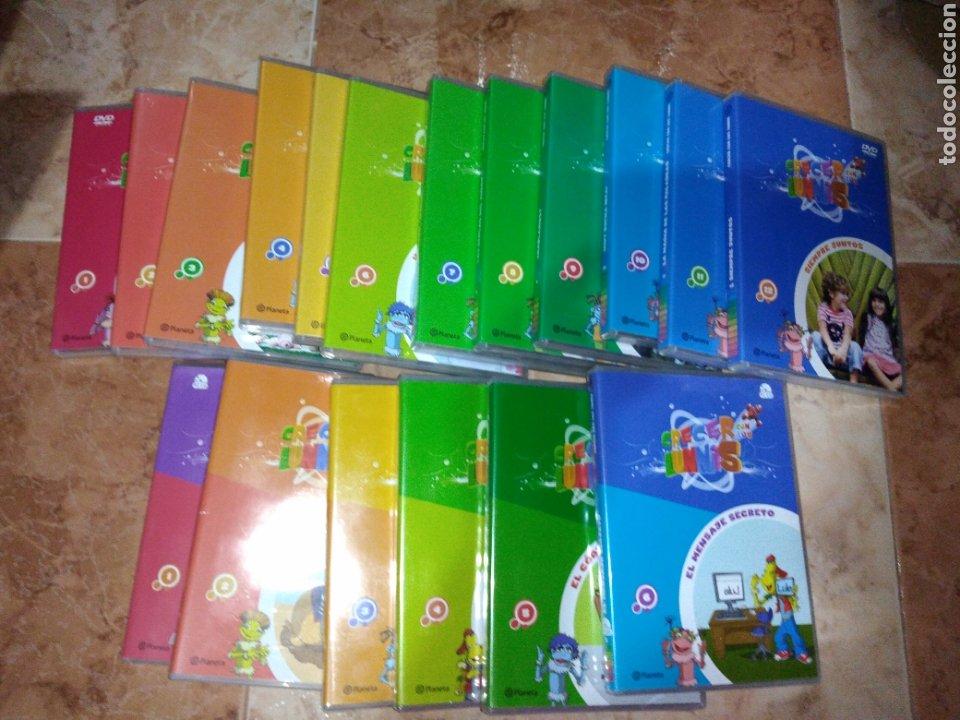 CRECER CON LOS LUNNIS 12 DVD Y 6 PC CD (Series TV en DVD)