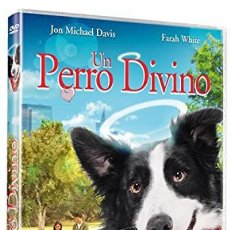 Series de TV: UN PERRO DIVINO (ANGEL DOG). Lote 214114541