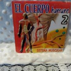 Series de TV: EL CUERPO HUMANO 2. SISTEMA MUSCULAR. DVD. Lote 221703945