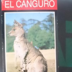 Series de TV: VHS EL CANGURO DOCUMENTAL -REFM1E3. Lote 84463280