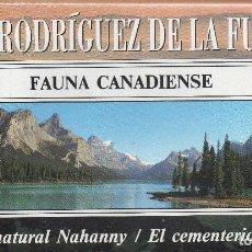 Series de TV: VESIV VHS FELIX RODRIGUEZ DE LA FUENTE Nº3 FAUNA CANADIENSE. Lote 96090335