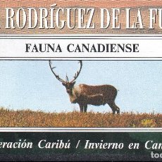 Series de TV: VESIV VHS FELIX RODRIGUEZ DE LA FUENTE Nº15 FAUNA CANADIENSE. Lote 96092283