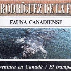 Series de TV: VESIV VHS FELIX RODRIGUEZ DE LA FUENTE Nº21 FAUNA CANADIENSE. Lote 96093003