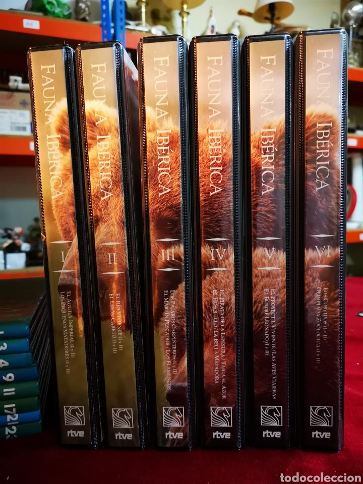 ¡COMPLETA! FAUNA IBÉRICA. FÉLIX RODRÍGUEZ DE LA FUENTE. (Series TV en VHS )