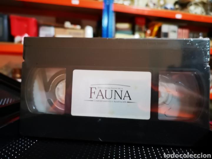 Series de TV: ¡COMPLETA! Fauna ibérica. Félix Rodríguez de la Fuente. - Foto 3 - 203733105