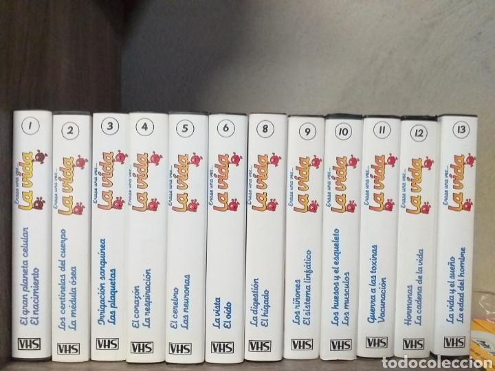 13 VHS DE LA COLECCIÓN ÉRASE UNA VEZ LA VIDA (Series TV en VHS )