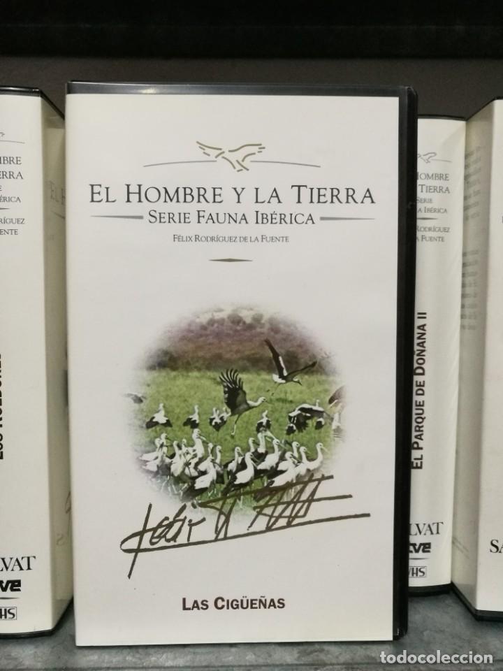 Series de TV: Lote 14 VHS Félix Rodríguez de la Fuente - El hombre y la tierra - Serie fauna ibérica - Foto 2 - 155295106