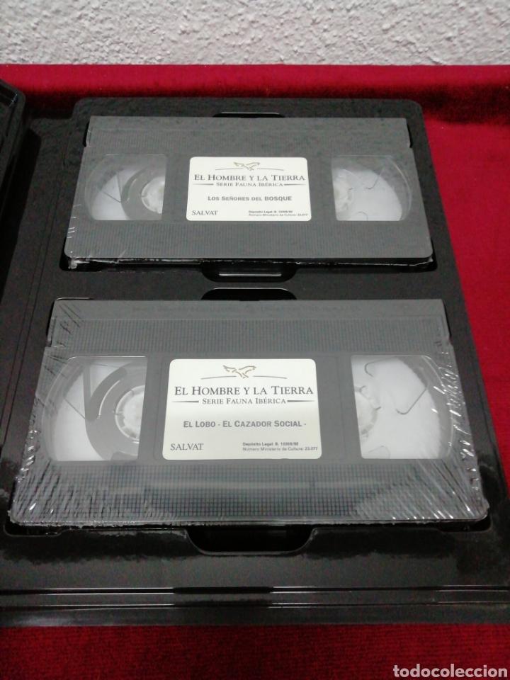 Series de TV: Fauna ibérica Félix Rodríguez de la Fuente. Colección Salvat VHS. Ocho estuches con dos VHS cada uno - Foto 3 - 162211646