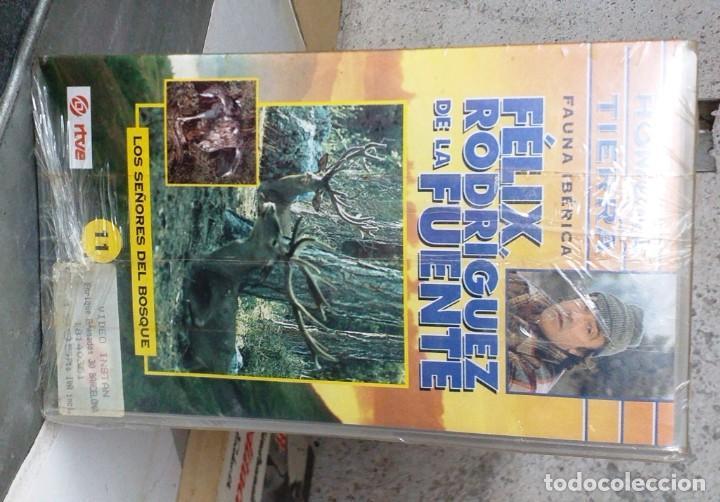 FELIX RODRIGUEZ DE LA FUENTE (Series TV en VHS )