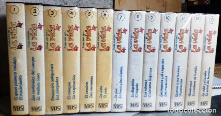 ERASE UNA VEZ....LA VIDA (Series TV en VHS )