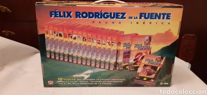 Series de TV: 18 videos VHS de Felix Rodríguez de la Fuente, en su caja - Foto 2 - 289506493