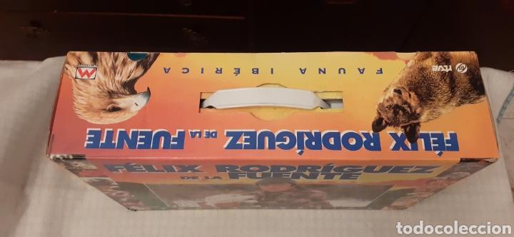 Series de TV: 18 videos VHS de Felix Rodríguez de la Fuente, en su caja - Foto 3 - 289506493