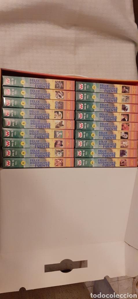 Series de TV: 18 videos VHS de Felix Rodríguez de la Fuente, en su caja - Foto 4 - 289506493