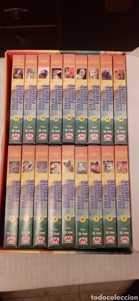 Series de TV: 18 videos VHS de Felix Rodríguez de la Fuente, en su caja - Foto 5 - 289506493