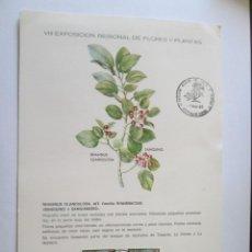 Sellos: TARJETA * VIII EXPOSICION REGIONAL DE FLORES Y PLANTAS * TENERIFE 1983. Lote 202413112