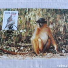 Sellos: TARJETA MAXIMA PRIMER DIA DE GUINEA BISSAU MONOS 1990. Lote 276395698