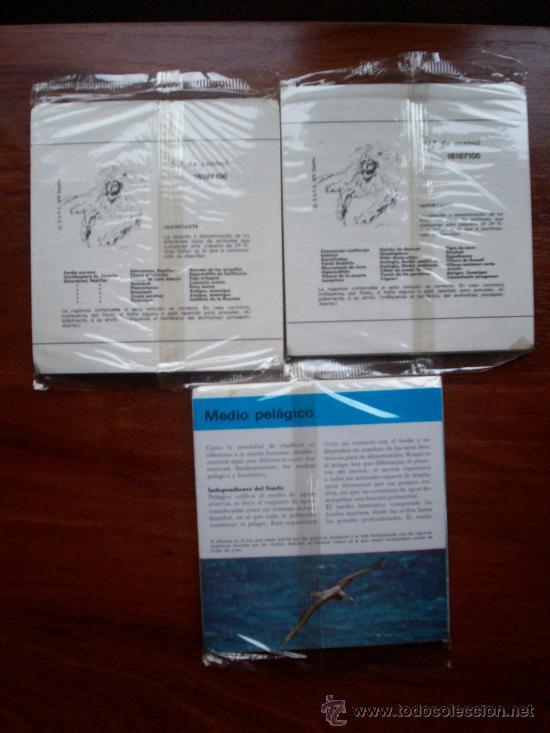 Coleccionismo Recortables: - Foto 2 - 14417651