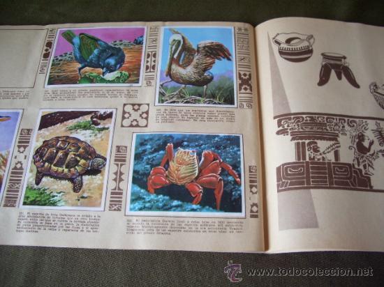Coleccionismo Álbumes: - Foto 6 - 24800726
