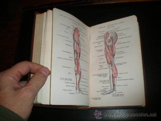 Libros de segunda mano: - Foto 7 - 26378546