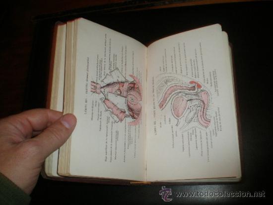Libros de segunda mano: - Foto 8 - 26378546