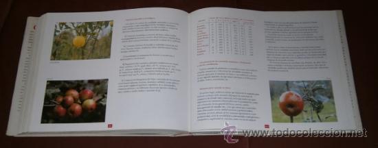 Libros de segunda mano: - Foto 4 - 29515201