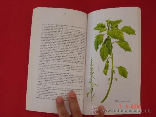 Plantas Medicinales De Uso Común En Chile. Aut.