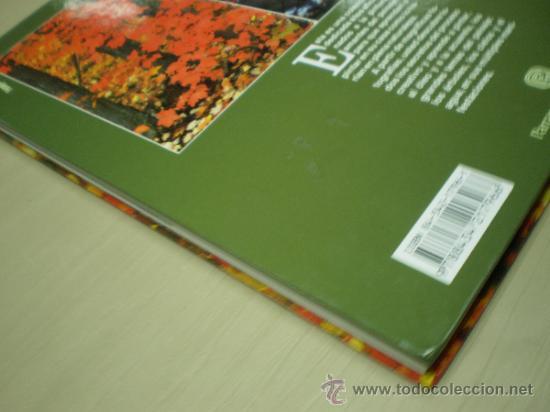 Libros de segunda mano: - Foto 4 - 35881070