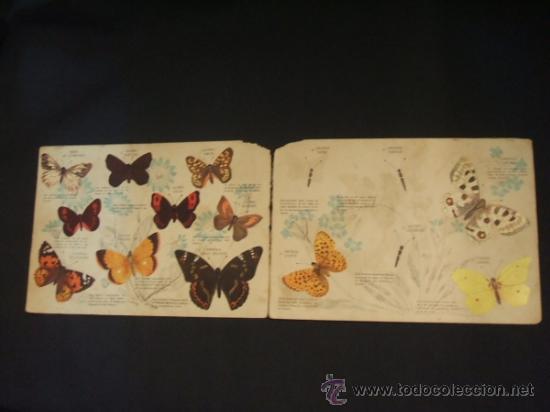 Coleccionismo Álbumes: - Foto 3 - 37999011