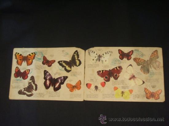 Coleccionismo Álbumes: - Foto 5 - 37999011