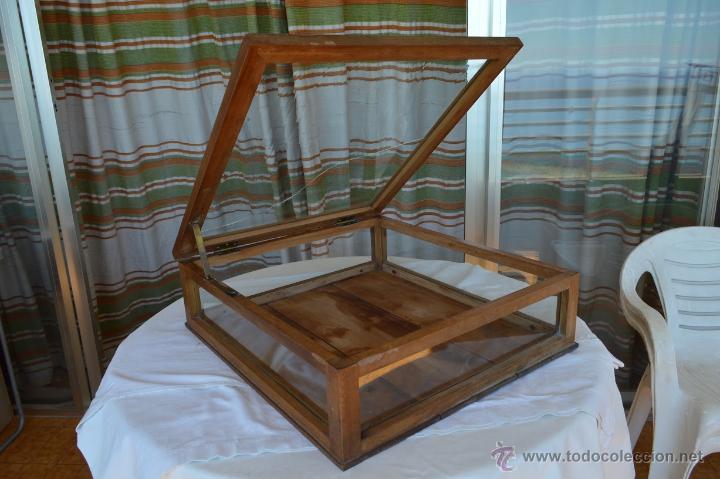 antigua vitrina de sobremesa, madera de nogal, - Comprar Vitrinas ...
