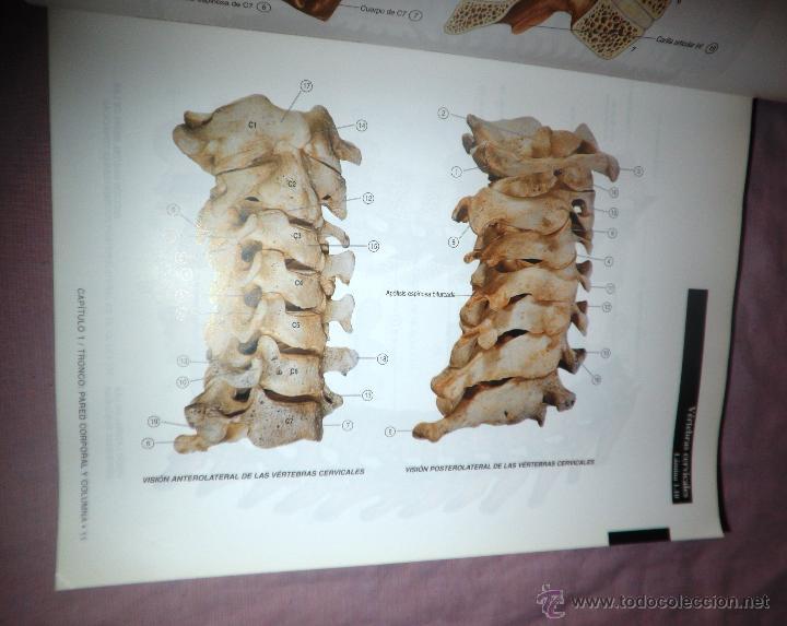 atlas de anatomia humana - t.r.olson - impresio - Comprar Libros de ...