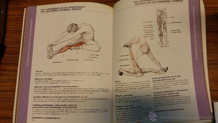 anatomia & estiramientos de brad walker - Comprar en todocoleccion ...