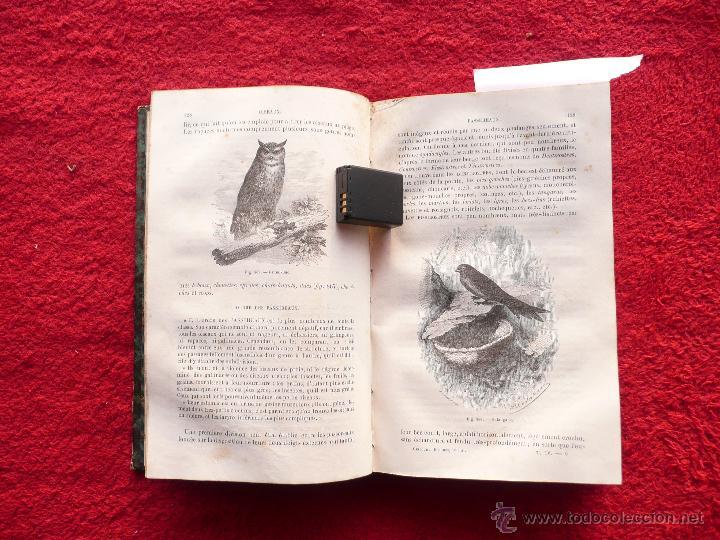 Libros antiguos: - Foto 18 - 52735768