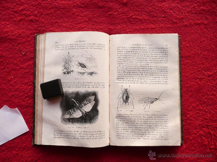 Libros antiguos: - Foto 20 - 52735768